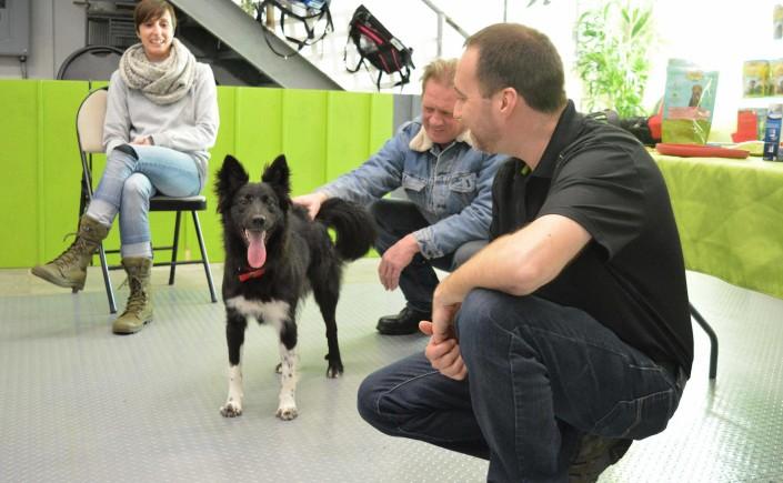 L'Escouade canine de la seconde chance